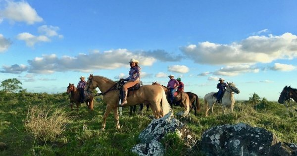 Private Horseback Countryside Tour on a Spectacular Ranch in Punta Cana