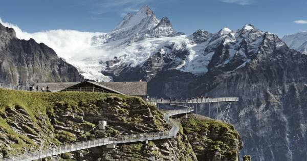 Grindelwald First - Top Adventure