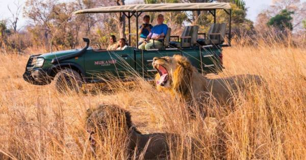6 Days Kafue and Victoria Falls Luxury Safari