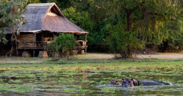 7 Days Best of Zambia Safari – Kafue & South Luangwa National Park